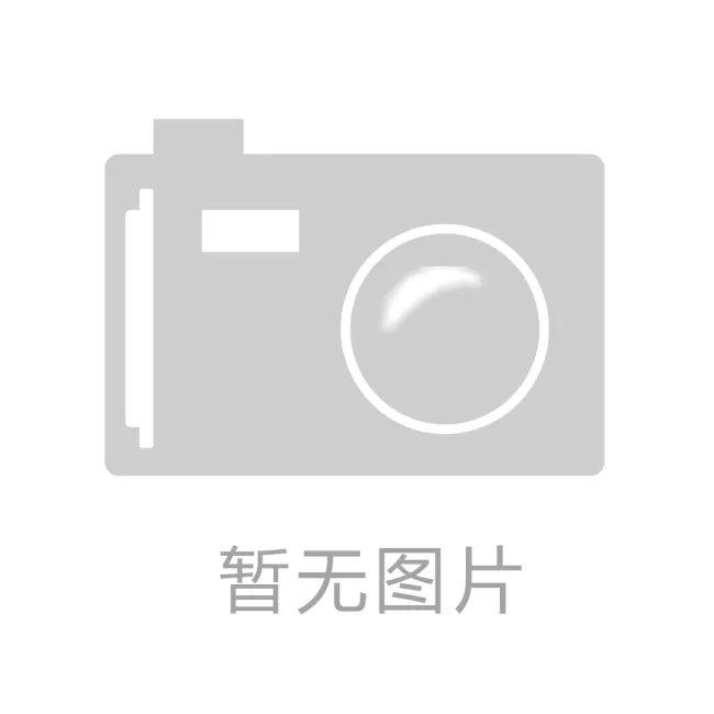 mp20零件或部件英文单词中文对照表